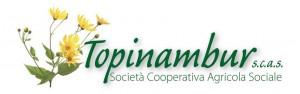topinambur logo